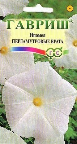 Вьющиеся растения для сада и дачи лучшие многолетние и